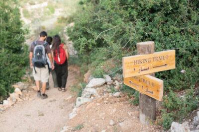 Hiking-Trails-in-Battir-Palestine-700x466