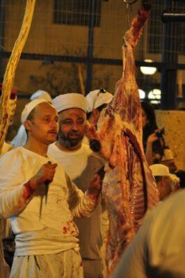 羊肉になった羊 (1)